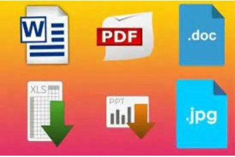 Mirza Hammas will do fast data entry and will create PDF files