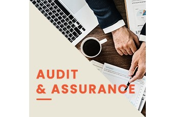 HPR  will do Audit and Assurance
