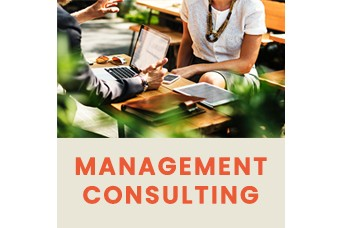 HPR  will do Management Consulting